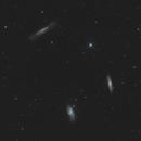 Leo Triplet - M65 / M66 / NGC 3628,                                Falk Schiel