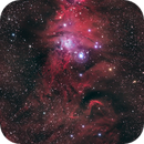 NGC2264, Cone Nebula and the Christmas Tree Cluster,                                Drew Evans