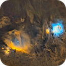 The Orion Region in Narrowband SHO from the city,                                Antoine Grelin