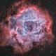 Rosette nebula NGC 2237 and cluster NGC 2244 Luminance (Ha+OIII) Colors (HOO),                                Jean-François Dou...