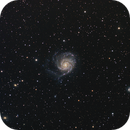 M101,                                Danny Flippo