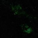 Cygnus in SHO,                                Doug Gray