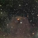 T Tauri and Hind's Variable Nebula (NGC1555),                                Nikola Nikolov