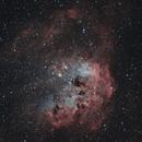 The Tadpole Nebula,                                Chris Parfett @astro_addiction