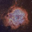 NGC 2237 Bicolor,                                Juergen