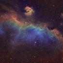 Seagull Nebula IC 2177,                                chuckp