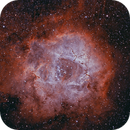 Rosette Nebula in HOO,                                Dan Kusz