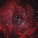 NGC2244 ROSE,                                Caoxi