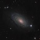 M63. The Sunflower Galaxy,                                Sergei Sankov