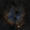Elephant Trunk Nebula Widefield SHO,                                Drew Lanphere