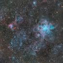 Nebulosa Tarántula - NGC 2070,                                astroalbo