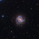 M83 - The Southern Pinwheel,                                Tim Hutchison