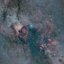 Cygnus Region ,                                Bill Mark