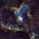 Heart Nebula, IC1805,                                Mike Missler