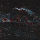 NGC6960: Western Veil Widefield Bicolor,                                Glenn Diekmann