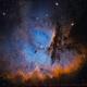 NGC 281 - Deep Sky West Remote Observatory,                                Deep Sky West (Ll...