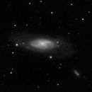 M106 - 20200702 - Meade2045D at F4,                                altazastro
