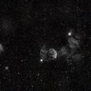 IC 443, IC 444 and NGC 2174,                                Izaac da Silva Leite