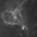 Heart Nebula,                                ks_observer