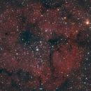 IC1396, Elephant's Trunk Nebula, Nikon D5300a, William Optics ZS61,                                feynman