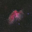Wizard / Flying Horse Nebula NGC7380 DSLR,                                Göran Nilsson