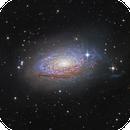 "M63 (NGC 5055), The Amazing Sunflower through a 20"",                                John Hayes"