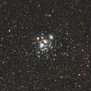 Jewel Box Cluster,                                Malcolm Ellis