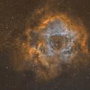 NGC 2237 The Rosette nebula,                                Komet