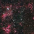 NGC 2032 & Vicinity (Two Panels),                                Miles Zhou