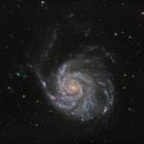 M101: LRGB from the back yard,                                Glenn Diekmann