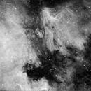 Pelican Nebula and (most of) the North America Nebula,                                Andrew_B