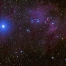 IC 2944 The Running Chook,                                Jonah Scott