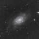 NGC 2403,                                Massimo Ermanni