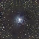 NGC 7023 - Nébuleuse de l'Iris,                                Daniel Fournier