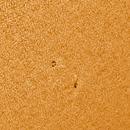 Sunspots on July 7 2019,                                Chris Nichols