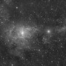 vdB 15 around the Star CE Cam,                                Marcel Drechsler