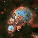 Cat's Paw Nebula,                                litobrit