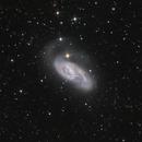 NGC3627,                                Martin Dufour