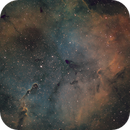 IC 1396 Elephant Trunk in SHO,                                Piet Vanneste