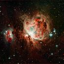M42 The Orion Nebula,                                Dale A Chamberlain