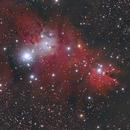 Christmas Tree Cluster (NGC 2264),                                Michael Schröder