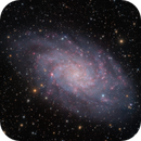The Triangulum Galaxy (M33) in LHαRGBOiii,                                Brent Newton