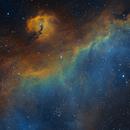Seagull Nebula,                                amatsoukas