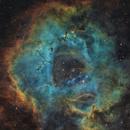 The Rosette Nebula Revisited,                                Bogdan Borz