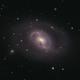 M96 Spring Time Galaxy,                                Stephan Linhart