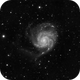 M101,                                Tomeu