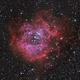 Rosette Nebula,                                drecruz