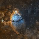 Fish Head Nebula - IC 1795,                                vi100