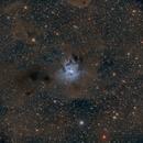 Iris Nebula,                                Chad Andrist