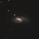 M66 Spiral Galaxy in Leo 20210412 4500s LRGB 01.4.1,                                Allan Alaoui